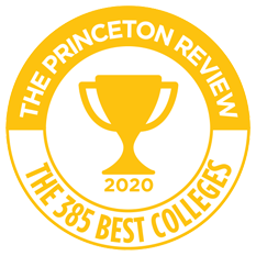 Princeton Review Badge