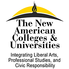 New American Colleges and Universities